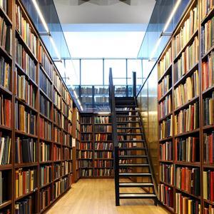Библиотеки Ильского